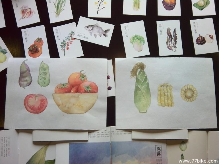 毕业展搜货季 24节气手绘作品